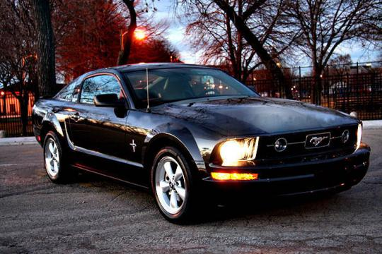 2007 ford mustang vin 1zvht82h775220614. Black Bedroom Furniture Sets. Home Design Ideas