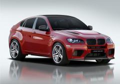 2013 BMW X6 Photo 1