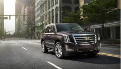 2016 Cadillac Escalade Photo 8