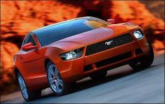 2009 Ford Mustang Photo 4