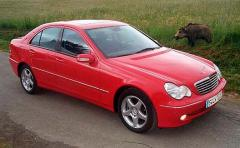 2001 Mercedes-Benz C-Class Photo 1