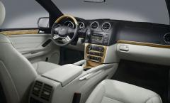 2010 Mercedes-Benz GL-Class Photo 2