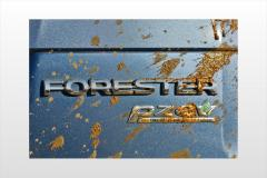 2015 Subaru Forester exterior